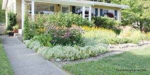 front yard suburban farm